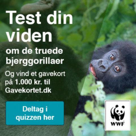 WWF konkurrence – vind 1.000 kr